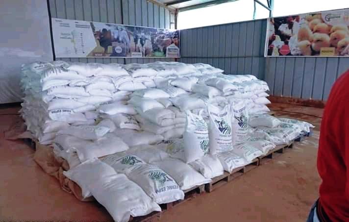 RDC-Haut-Katanga: exonération globale des maïs