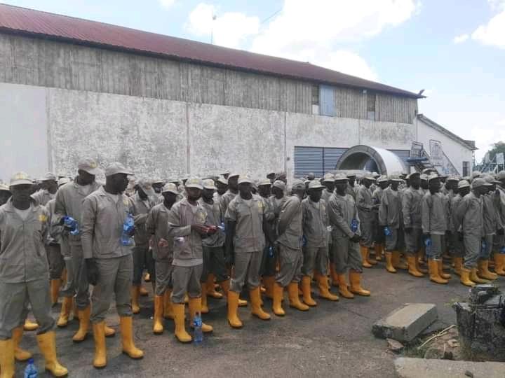 Kasaï oriental : 319 Kulunas en transit vers Kaniama Kasese ont débarqué à Mbujimayi