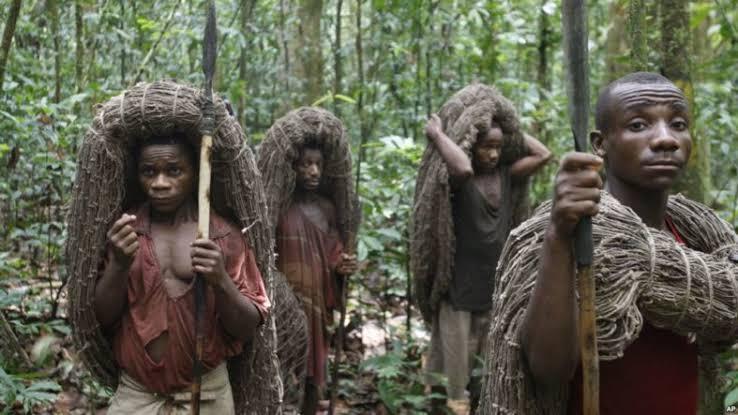 RDC: Une loi votée pour protéger les droits des peuples autochtones pygmées